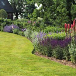 27. juuni: avatud aia päev Palusalu aias Põlvamaal