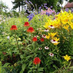 7-8 August: Open garden days at Kaevandi farm, Viljandi county, Estonia