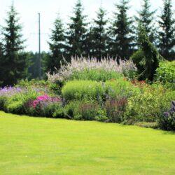 29. augusts: Atvērto dārzu diena Palusalu dārzā, Põlvas apriņķis, Igaunija