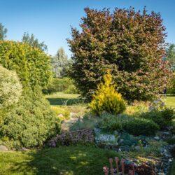 15. august: avatud aia päev Risttee talus Viljandimaal