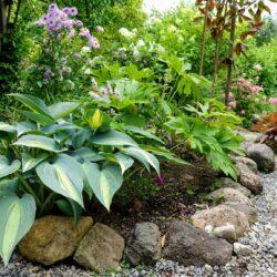 7. august: Hostade põnev maailm Laidi aias Mustvees