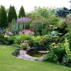 14.-15. augusts: Vēlie vasaras ziedi Maie dārzā, Pērnavas apriņķis, Igaunija