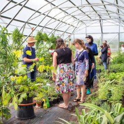 1.-2. august: Avatud aia päev Lādes Avotiņi ürdiaias Limbaži kihelkonnas