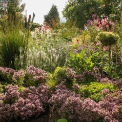 31 July-1 August - Open Garden Days in